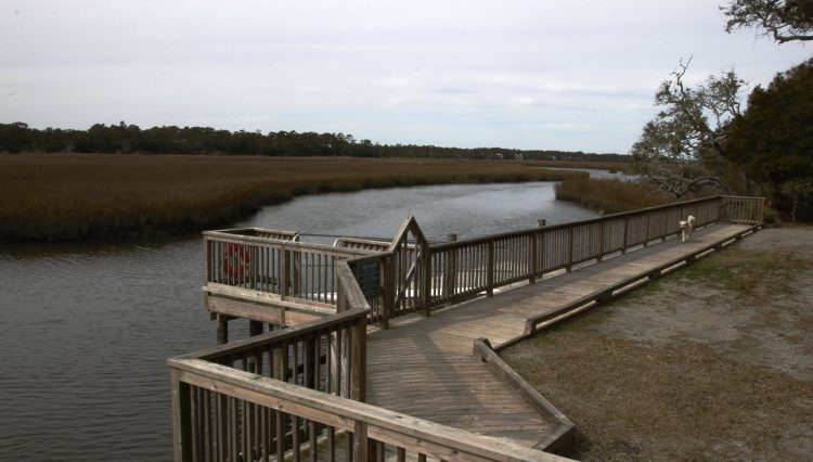 Middle island dock 2
