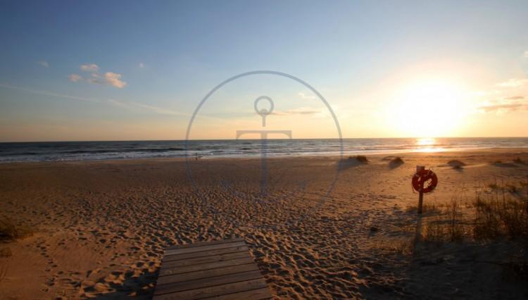 beach2-1024x683
